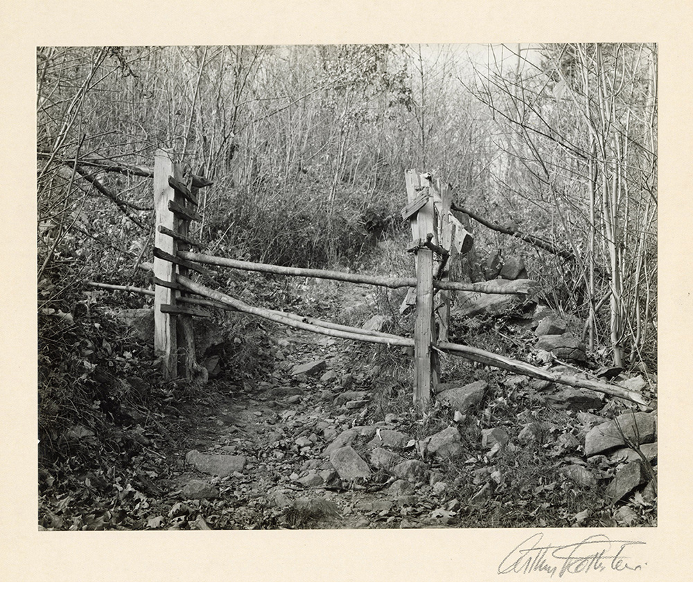 "Path, Blue Ridge Mts, VA, 1935, vintage gelatin silver print, mounted and signed, 7 x 9"""