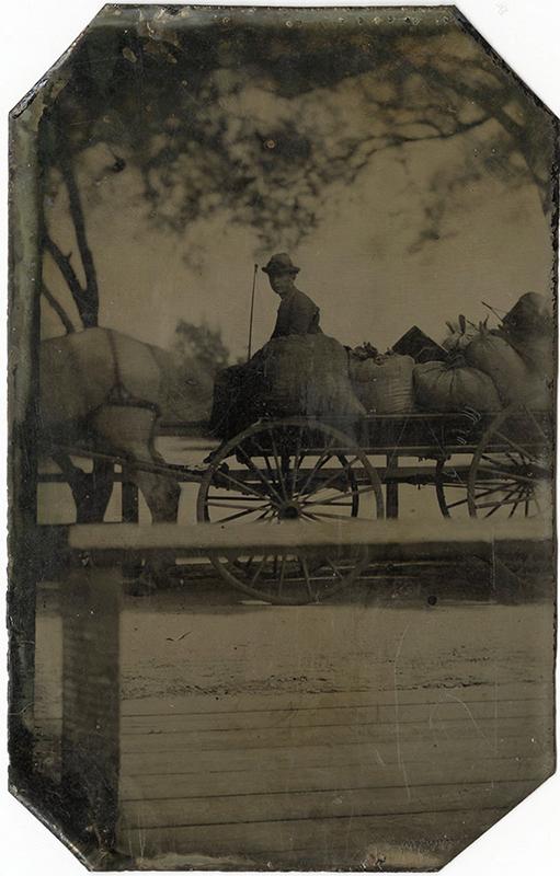 Man, Horse and Wagon tintype